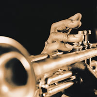 Brass Roots - Jazz Band in Princeton, New Jersey