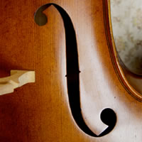 String and Piano Ensemble - Viola Player in Akron, Ohio