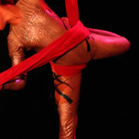 Pole Addiction and Aerial Dragonfly - Fire Performer in Lansing, Michigan