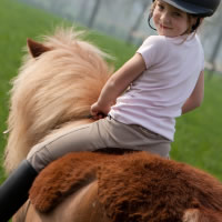 Patch 22 Pony Rides, Hayrides + Petting Farms - Pony Party in Racine, Wisconsin