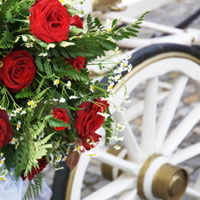 Breckenridge carriage - Event Services in Staunton, Virginia