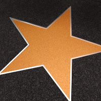Star Photography - Actress in Cleveland, Ohio