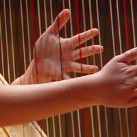 Natalie Salzman - Harpist in West Tisbury, Massachusetts