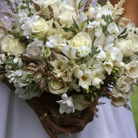 Nu Beginnings Weddings & Events
