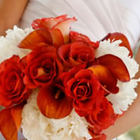 MW Flower Design - Wedding Florist / Party Decor in Toronto, Ontario